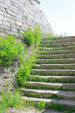 Stone Wall and Stairs. Old stone wall and stairs in foliage as a part of the Medieval Fortress Baba Vida in Vidin, northwestern Bulgaria stock images