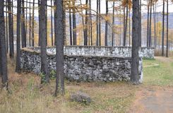 Stone wall. In the forest  beautiful Royalty Free Stock Photos