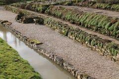 Stone Wall Terraces. Stock Photo