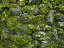 Stone wall texture. Uneven stone wall texture for backgrounds Royalty Free Stock Image