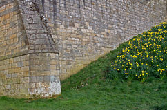 Stone wall texture detail Medieval castle. Stock Photography
