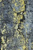 Close up stone wall texture for backgrounds and interesting textures. stock images