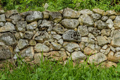 Stone wall texture with moss and green grass Royalty Free Stock Photo