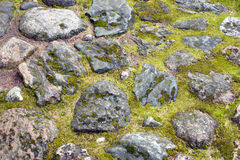 Stone wall texture with moss Stock Photo