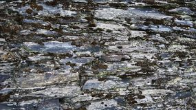 Stone wall of time Stock Images