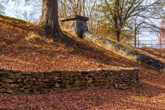Stone wall and tree trunk in autumn park Royalty Free Stock Images
