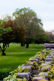 Stone wall and trees. Park with trees bordered by stone wall covered in creepers Royalty Free Stock Photography