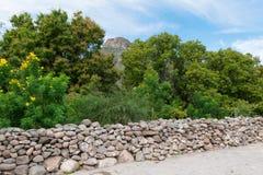 Stone wall and trees Royalty Free Stock Photos
