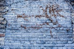 A stone wall Stock Image