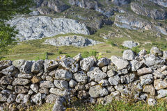 Stone wall in in Valle del Lago. One of fifteen parishes in Somiedo, a municipality located in the central area of the Cantabrian Mountains, Principality of Stock Photography