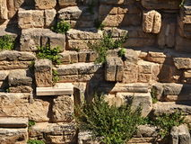 Stone wall. With weed growing between the bricks Royalty Free Stock Photo