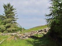 Stone walls. Stock Photos