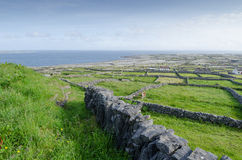Stone walls, inismeain, aran islands, ireland Royalty Free Stock Photo