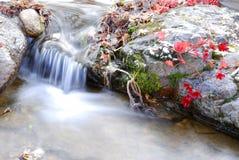 Stone & Water Stock Photo
