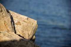 Stone on the water background. (Enisey river Russia Royalty Free Stock Photo