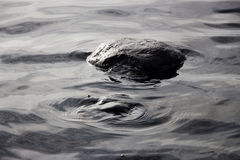 Stone and water circles Stock Photography