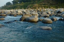 Stone in Water Flowing in river  H.P India