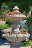 Stone water fountain with plants Stock Photography
