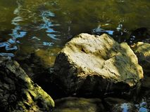 Stone in the water Royalty Free Stock Image