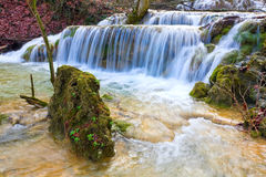 Stone in water of mountain waterfall Stock Photos