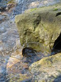 Stone. In the water in our local stream suitable as a background stock photography