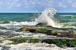 Stone and wave Royalty Free Stock Photo