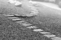 Stone way in green grass in monochrome Stock Photo