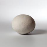 Stone on white background Royalty Free Stock Photo