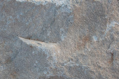 Stone white with irregularities on the surface Stock Image