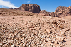 Stone wildness in mountain valley in Petra, Stock Images
