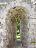 Stone Window View. A view of a tree through an ancient stone window at Cong Abbey, Ireland Stock Photography