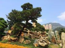 Stone zen garden park Royalty Free Stock Photography