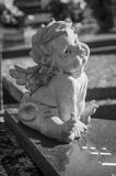 Stoned angel  on a tomb. Stoned angel in cemetery on a tomb Royalty Free Stock Photography