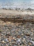Stoned Beach Stock Image