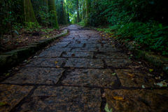 A stoned entrance of Hakone shrine, in the forest in Japan.  Stock Photography