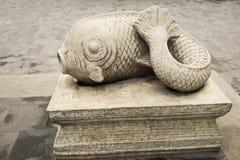 Stonefish Stock Image