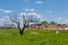 stonegrave Fotografia Stock