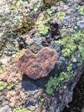 Stoneheart Arkivbilder