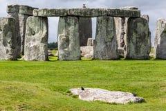 Stonehenge arkeologisk plats England Arkivfoton