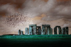 Stonehenge. A moody image of Stonehenge with a flock of birds above royalty free stock photos