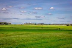 Stonehenge in England Stock Photography