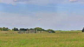 stonehenge uk Royaltyfri Bild