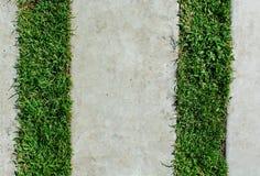 Stonepath med gräs Arkivfoton