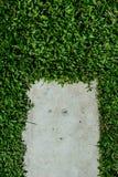 Stonepath med gräs Arkivbilder