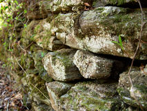 Stones. Stone and moss background texture Royalty Free Stock Photos