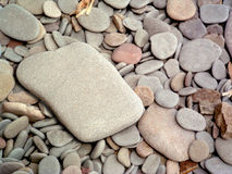 Stones. A smooth flat stone on a background of smaller stones Royalty Free Stock Images