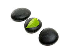 Stones. Black stones and green leaf Stock Photography