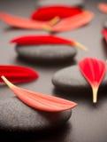 Stones. Stock Photography