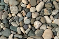 Stones. Large stones of a dry riverbed Royalty Free Stock Photos