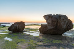Stones with Algae before sunrise. At Narrabeen,NSW,Australia Royalty Free Stock Photos